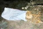 مردان گنج یاب ارومیه ای در چنگال قانون / اسکلت انسان کشف شد